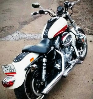 Sportster 2010-2020 Engine Guard Mustache-Chrome